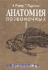 Анатомия позвоночных в 2х томах