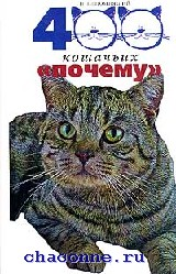 400 кошачьих почему