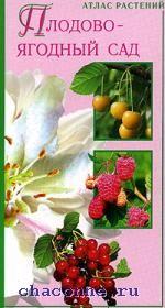 Плодово-ягодный сад
