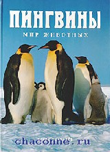 Пингвины. Мир животных