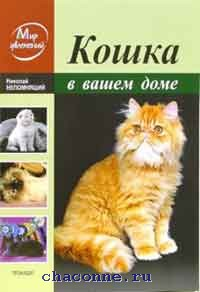 Кошка в вашем доме