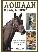 Лошади и уход за ними