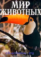 Мир животных. Птицы