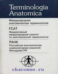 Международная анатомическая терминология