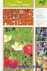 Дикорастущие лекарственные растения