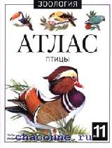 Птицы. Атлас