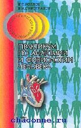 Практикум по анатомии и физиологии человека
