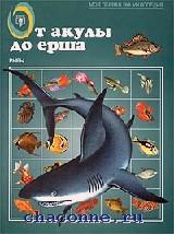 От акулы до ерша