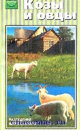 Козы и овцы. Разведение. Выращивание. Использование продукции