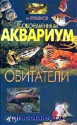 Современный аквариум и его обитатели