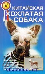 Китайская хохлатая собака. Стандарты. Содержание
