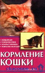 Кормление кошки. Основы питания. Разнообразие кормов