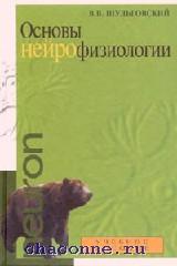 Основы нейрофизиологии. Учебное пособие