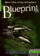 Blueprint 2 TB