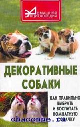 Декоративные собаки. Как правильно выбрать