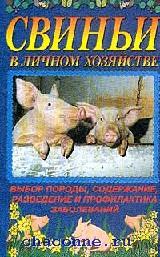 Свиньи в личном хозяйстве. Выбор породы, содержание