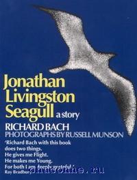 Jonathan L Seagull