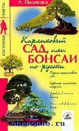 Карликовый сад или бонсаи по-русски