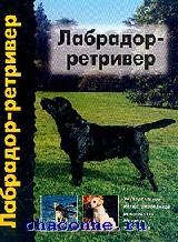 Лабрадор-ретривер. Универсальное иллюстрированное руководство по уходу за собакой