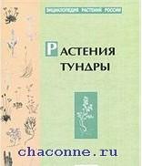 Энциклопедия растений России. Растения тундры