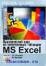 Практический курс по электронным таблицам Excel