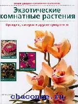 Экзотические комнатные растения. Орхидеи, кактусы