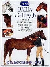 Ваша лошадь
