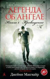 Легенда об ангеле. Провидение книга 1я