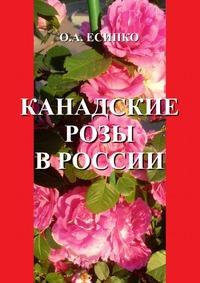 Канадские розы в России